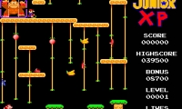 Donkey Kong Junior XP