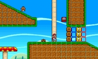 Super Mario Bros: Coin Quest