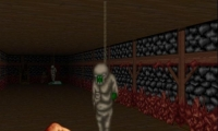 Splatterhouse 3D